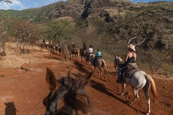 West Oahu Horseback Adventure