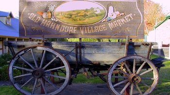 Adelaide Highlights & Hahndorf Town Half-Day Tour
