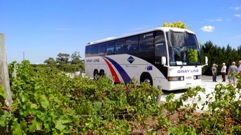 Grand Barossa Valley Day Tour with Hahndorf from Adelaide
