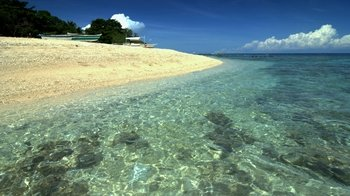 Full-Day Balicasag Island Tour with Snorkelling & Lunch