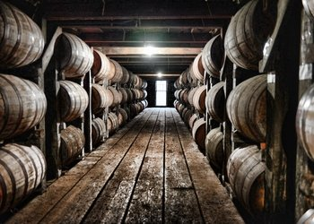 Full-Day Kentucky Bourbon Tour