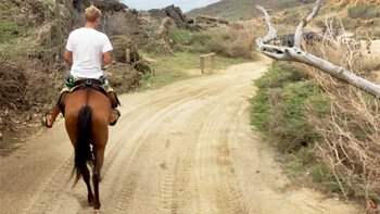 Horseback Riding Tour to Andicuri Beach