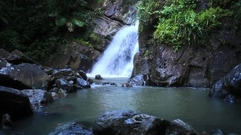 El Yunque Off the Beaten Path Hiking Tour
