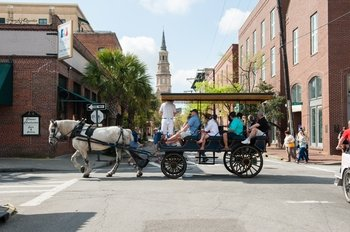 Carriage Tour of Historic Charleston