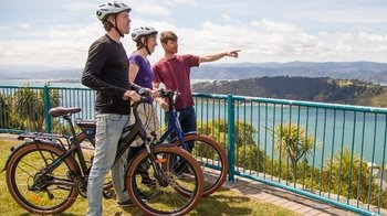 Guided Wellington Electric Bike Tour