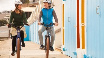 Full-Day Bicycle Hire in Wellington