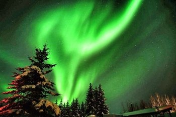 An Enchanted Evening- Aurora Viewing from Cabin w/Transport