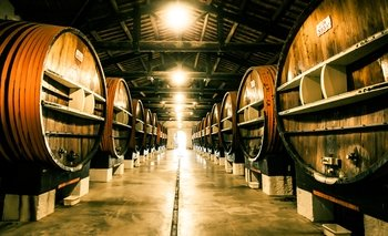 Exclusive visit of Noilly Prat Vermouth Cellar, with tasting