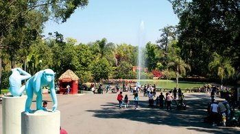 Guadalajara Zoo & Safari Admission