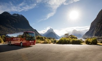 Milford Sound Coach & Nature Cruise with Buffet Lunch