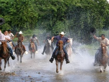 Horseback Ride & Zip Line Adventure Combo Tour