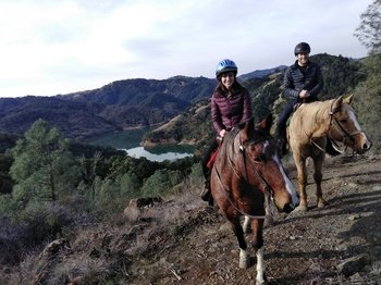 Wine Country Horseback Adventure