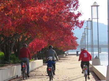 Inside the Heart of Canberra by Electric Bike Tour