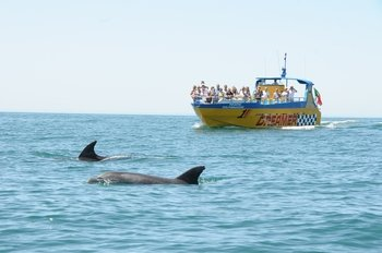 Dreamer - Albufeira Caves and Dolphin Watching Cruise