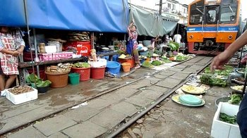 Maeklong Market on the Train Tracks & Swimming Monkeys