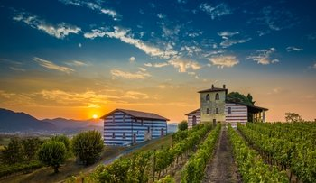 Franciacorta Wine Tasting & Shopping Tour from Bergamo