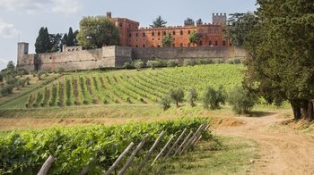 Chianti & Castles Full-Day Wine Tour with Lunch from Siena
