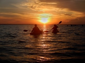 Sunset Birding Kayak Tour