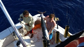 Full-Day Deep Sea Fishing