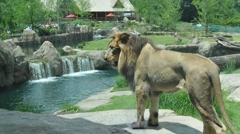1-Day General Admission Ticket to the Cincinnati Zoo