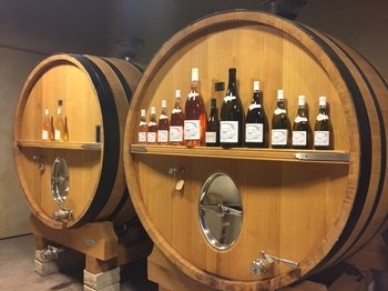 Cassis and Bandol wine Full-day tour from Marseille