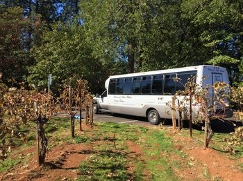 Wine and Harvest Tour