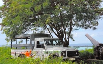 Bora Bora 4WD Tour, Lunch at Bloody Mary's & Snorkel Safari
