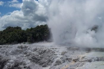 1-Day Rotorua Tour from Auckland with Options