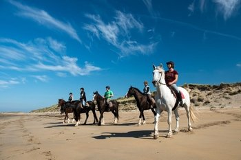 Beach horse-riding in Connemara-Full day from Galway