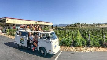 California Themed Wine Tours in a VW Bus
