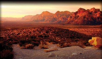 Las Vegas Scenic Tours Presents the Iconic Red Rock Canyon