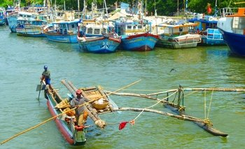 Lagoon Escapes Fishy Affair - Negombo Day Trip