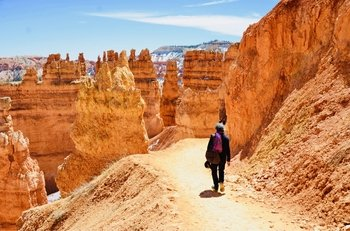 Small Group Tour - Zion and Bryce Canyon National Parks