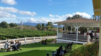 Winery Tour with Lunch from Solvang or Santa Ynez Valley.
