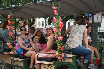 Horse & Carriage and Passing the Torch Walking Tour Combo