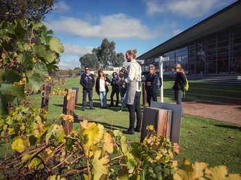 Barossa Valley Wine Tasting Tour (departing Adelaide)