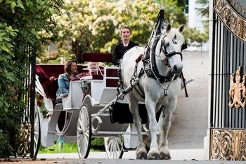 Private PREMIER Horse-Drawn Carriage Tour of Victoria