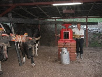 El Trapiche Tour, Natural Experience of Sugar, Coffe and Cocoa