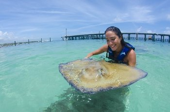 Shark and Stingray Excursion from Punta Cana