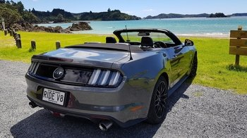 Half Day 'Muster' - Bay of Islands Private V8 Mustang Tour