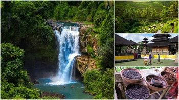 Full-Day Private Tour Gorgeous of Bali