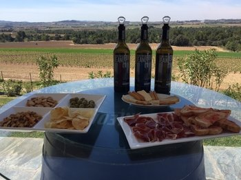 Wineries, Art & tapas - Private tour