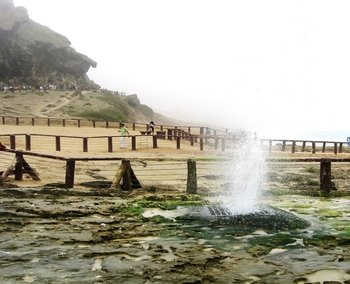 The Best of West: Salalah Tours