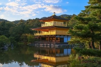 Kyoto Arashiyama and Nara 1 Day Bus Tour