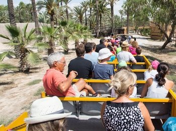 Rio Safari Elche with Transport from Benidorm or Albir