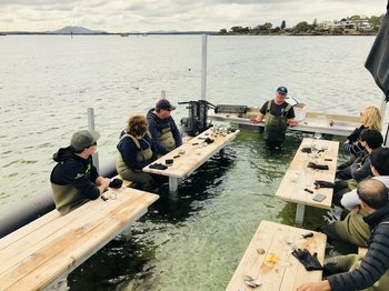 Oyster Farm & Tasting Tour + Transport - Coffin Bay