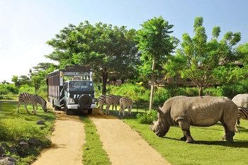 Private Tour: Ubud and Bali Safari Marine Park