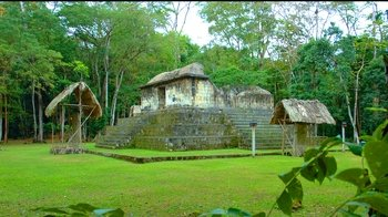 Ceibal Full Day Tour (From Flores or Tikal)