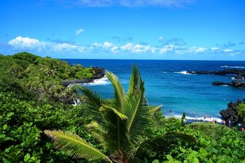 Small Group Luxury Road to Hana Waterfalls & Lunch