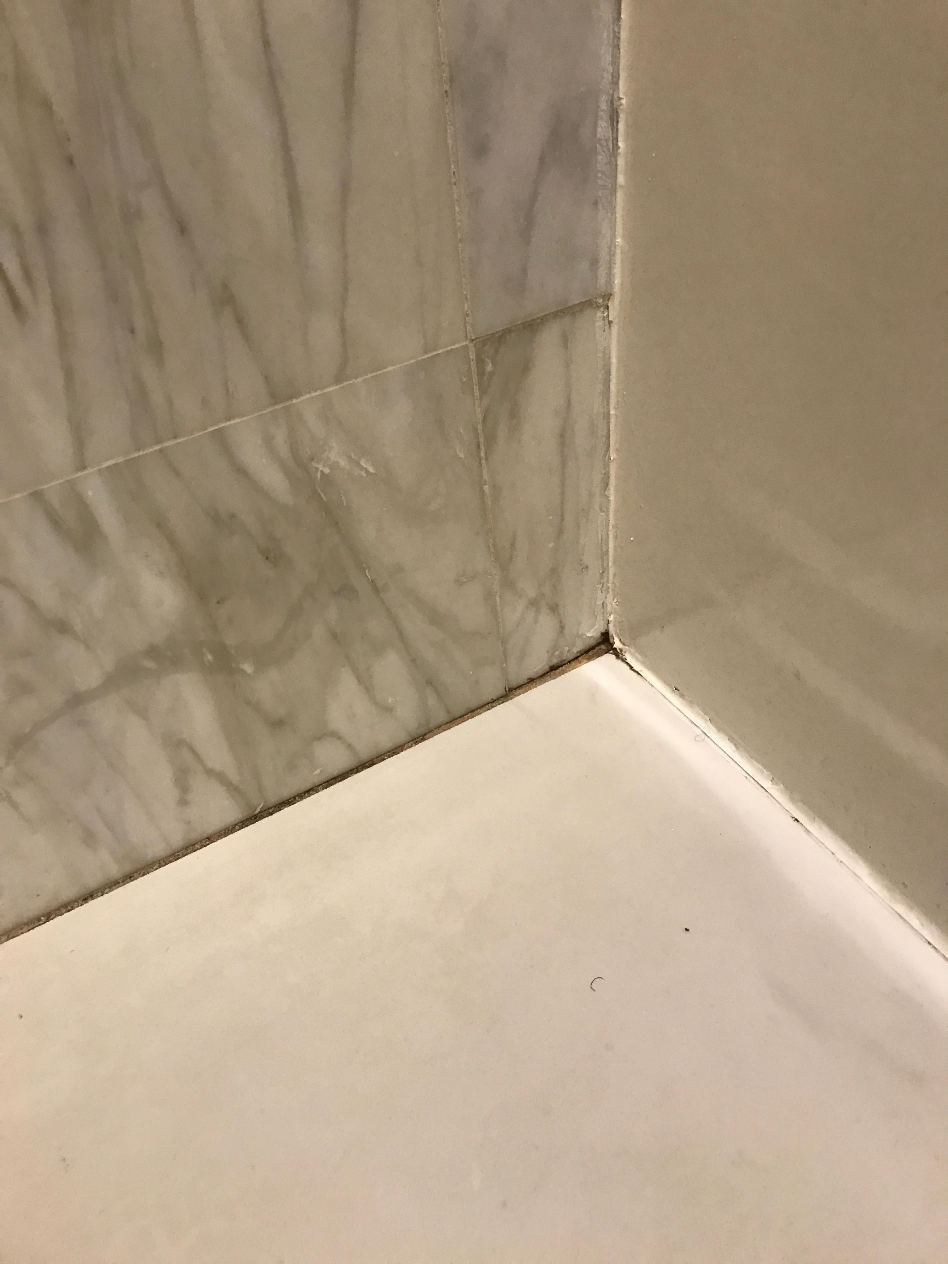Mildew on bathroom floor